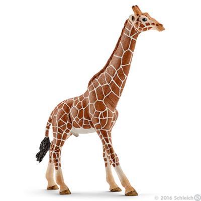 Schleich 14749 Giraffe, male